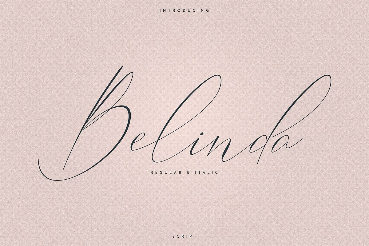 Belinda Script - Regular and Italic example image 1