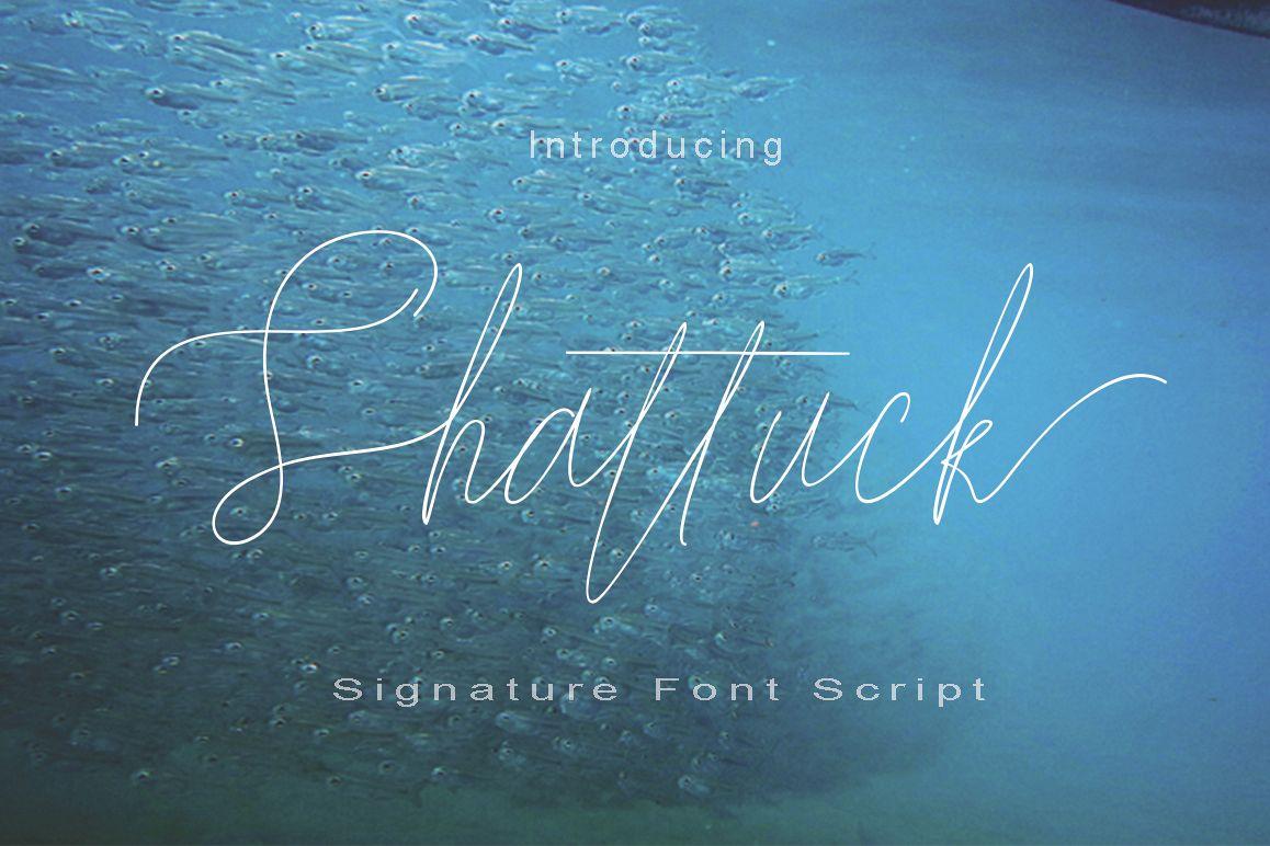 Shattuck example image 1