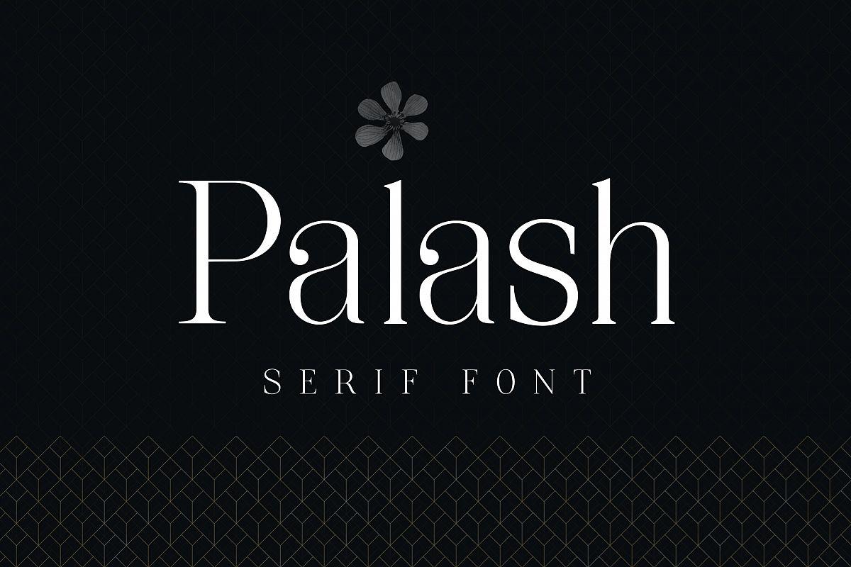 Palash - Serif Font example image 1