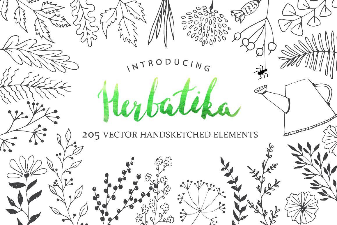 Herbatika Vector Sketched Set example image 1