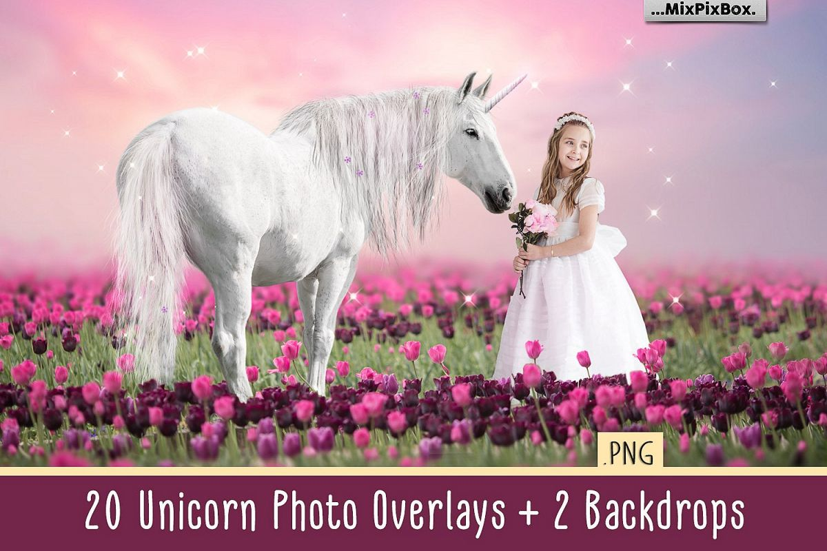 Unicorn PNG Overlays and Backdrops Pack example image 1
