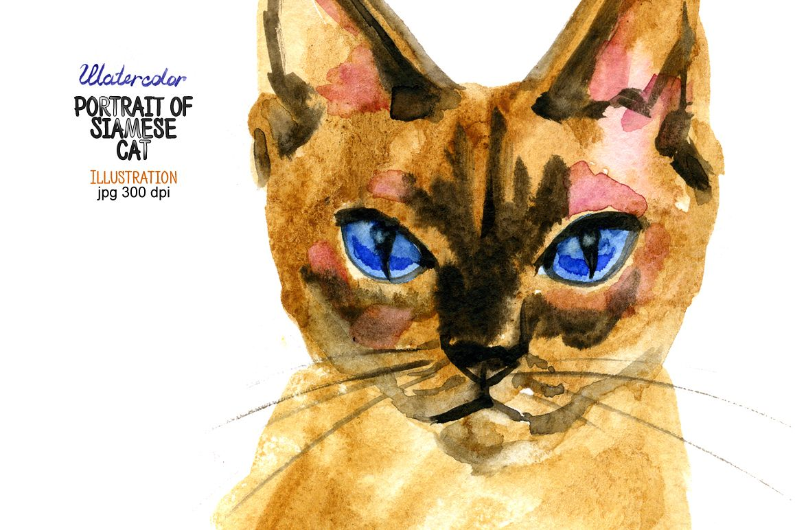 Watercolor portrait of Siamese cat example image 1