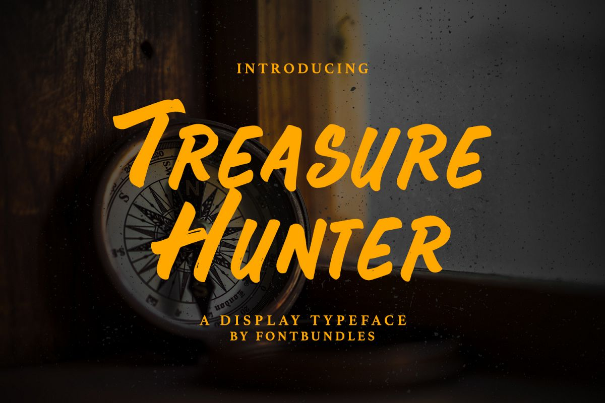 Treasure Hunter example image 1