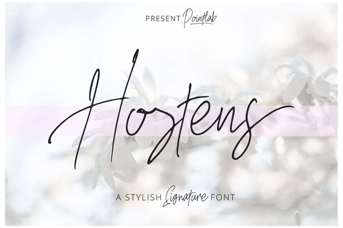 Hostens Signature example image 1