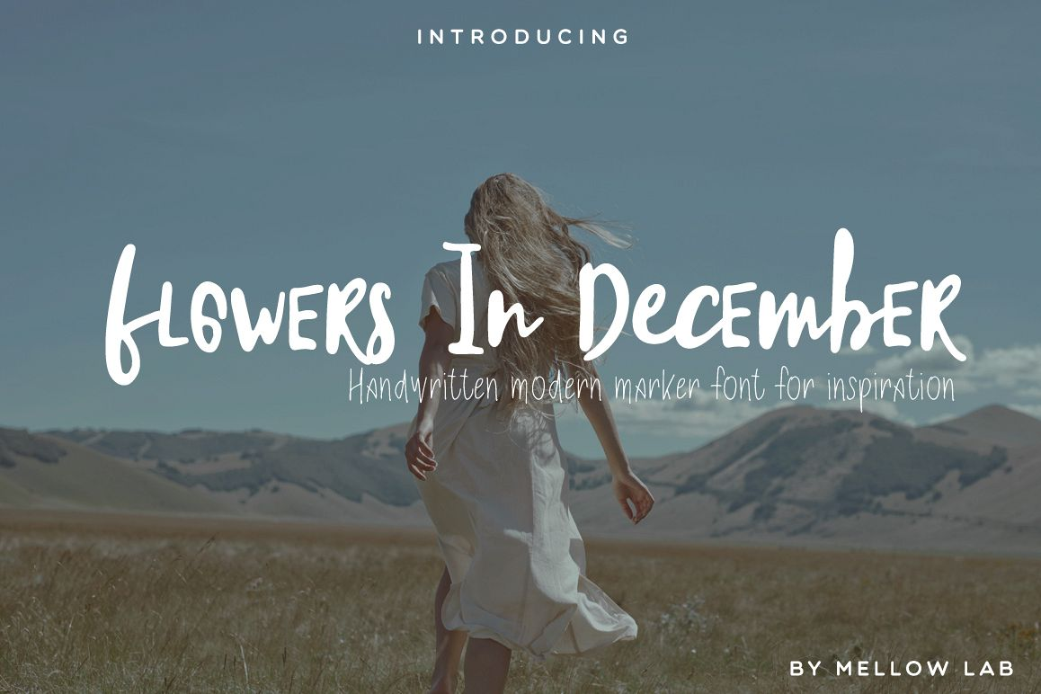 Flowers In December Font Duo example image 1