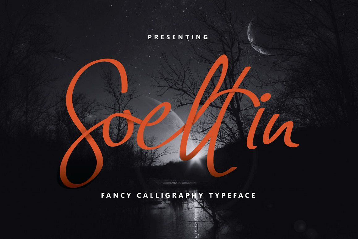 Soeltin Typeface example image 1