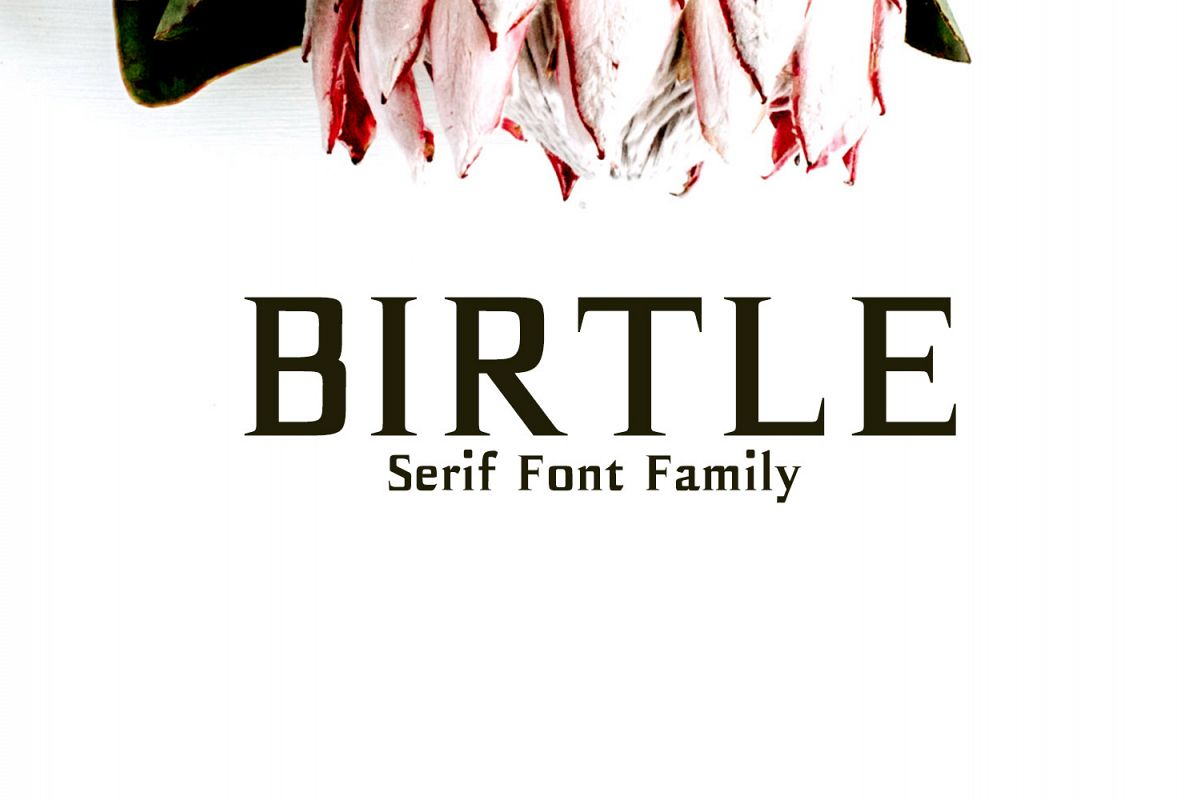 Birtle Serif Font Family example image 1