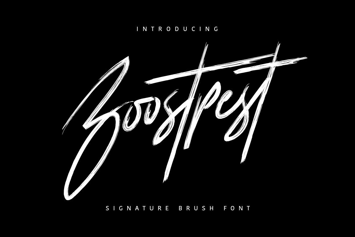 Boostpest Signature Brush Font example image 1