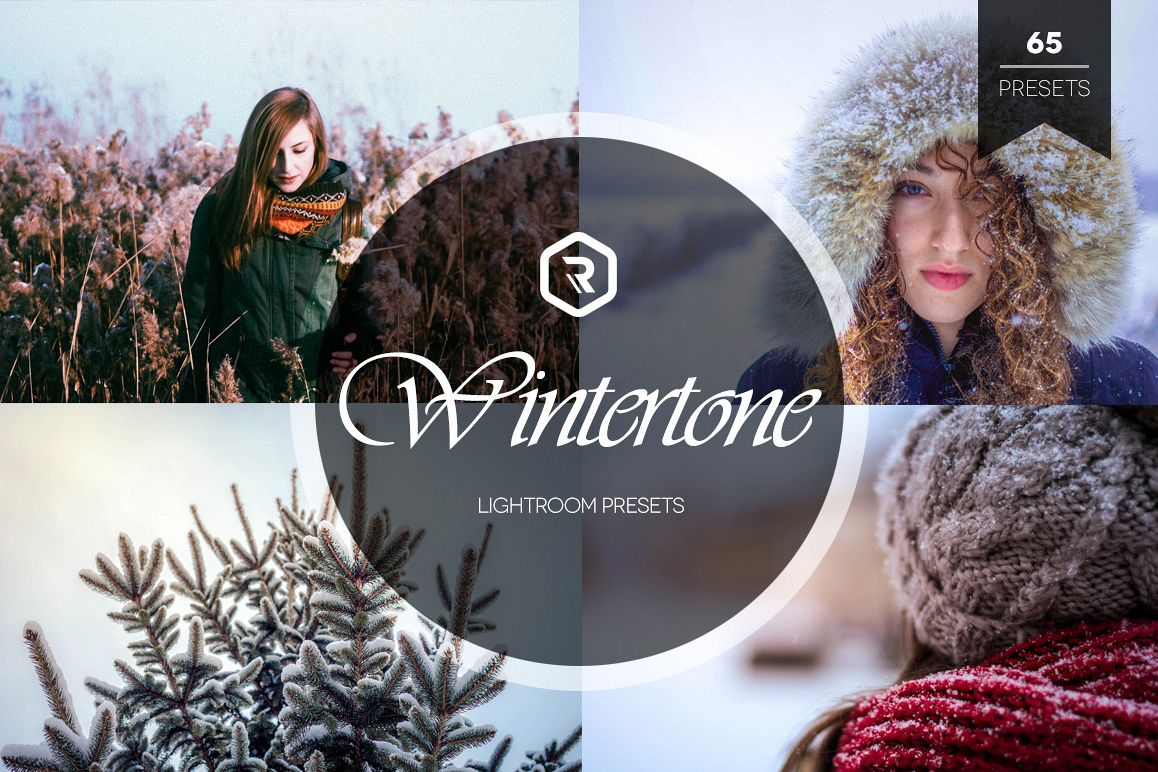 Wintertone Lightroom Presets example image 1