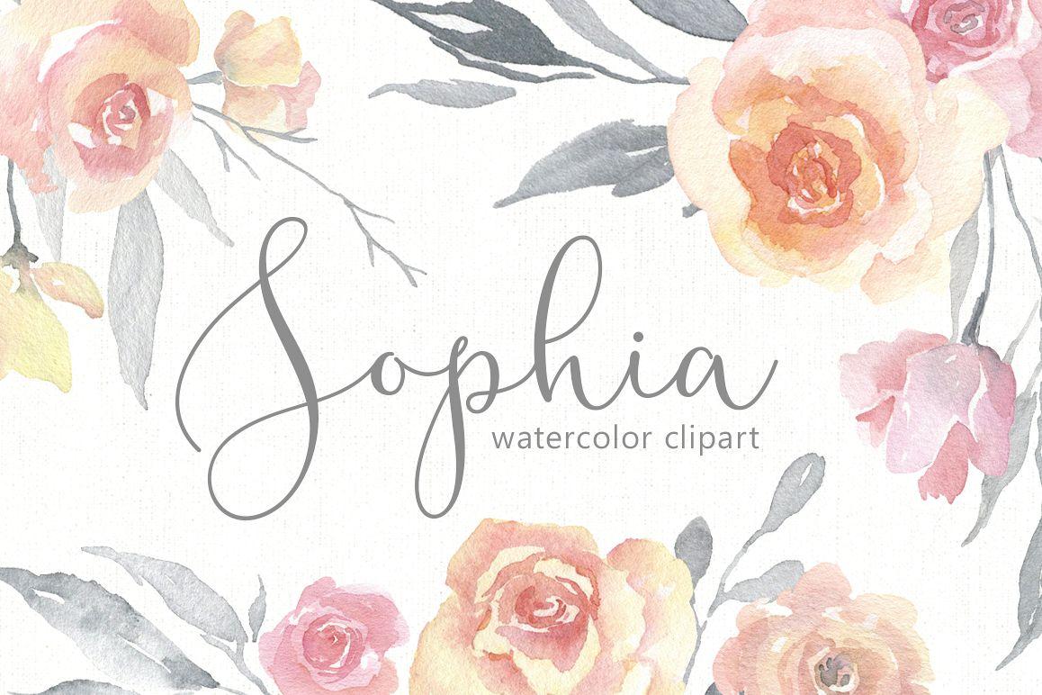 Light Gentle Watercolor Pink Flowers Roses Png
