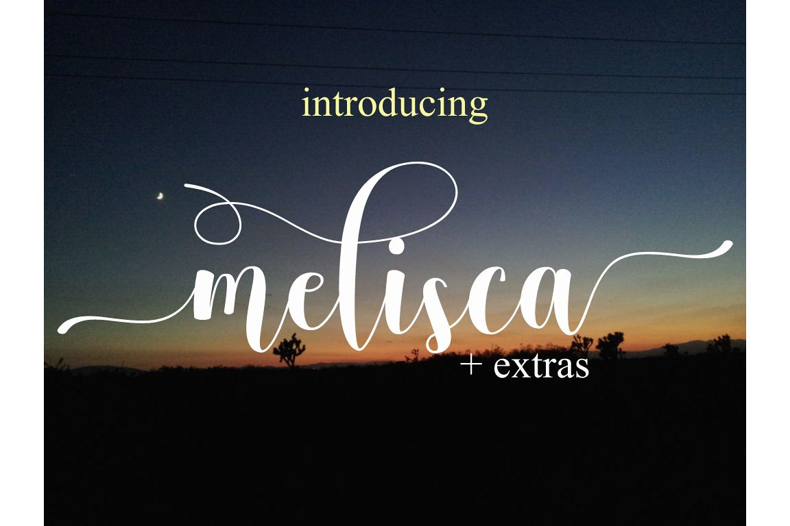 melisca example image 1