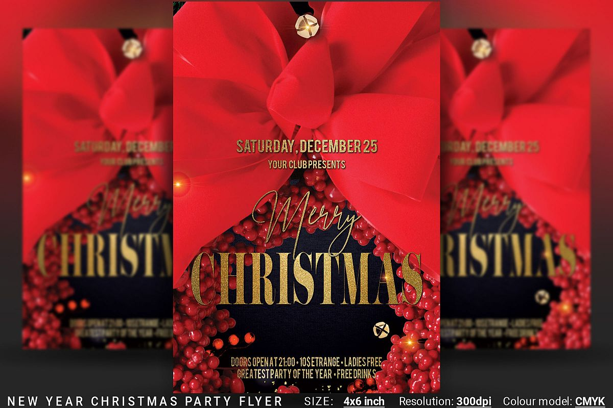 Christmas New Year Party Flyer example image 1