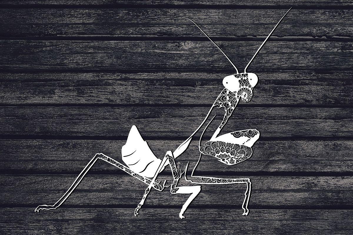 Praying Mantis Svg, Mandala Svg, Insect Svg, Animal Svg example image 1
