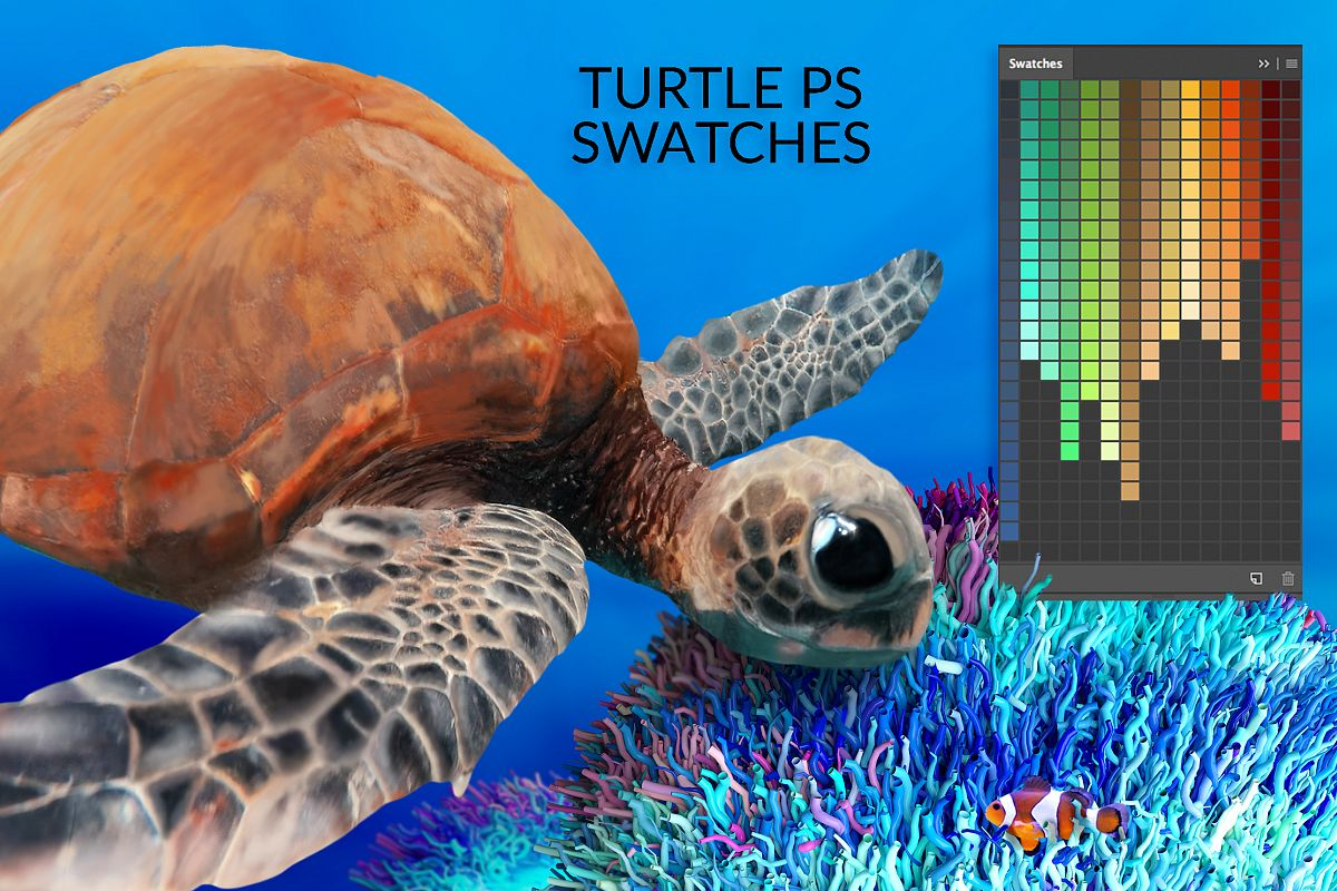 Turtle Swatches & Coral Overlays example image 1