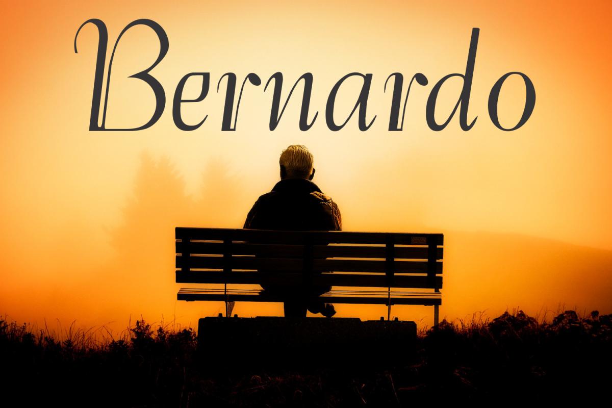 Bernardo (FAMILY PACK PROMOTIONAL) example image 1