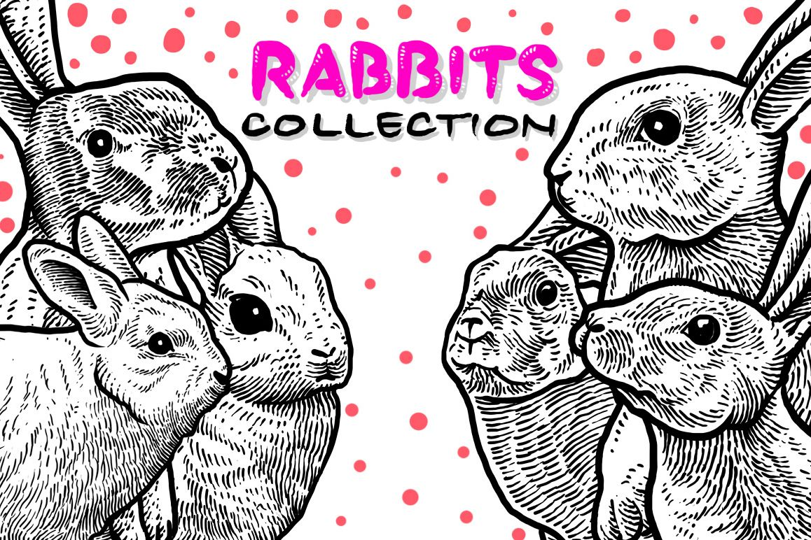 Rabbits Collection Art example image 1