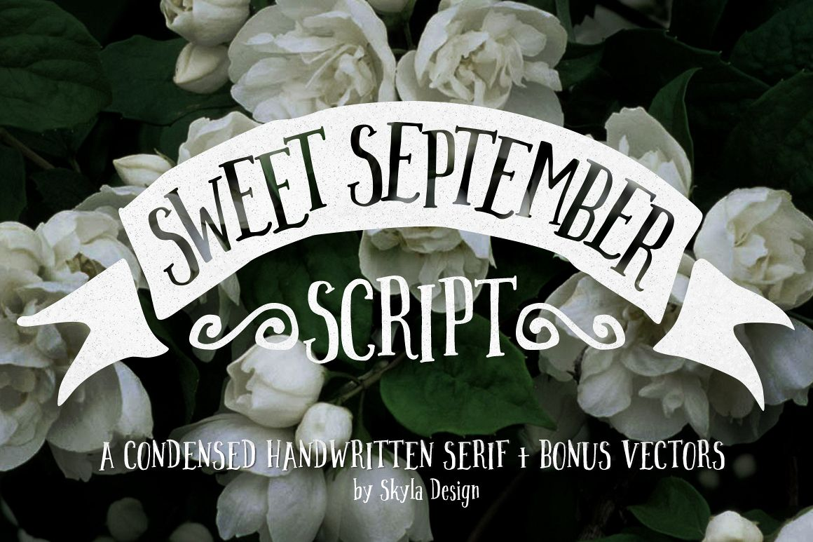 Handwritten font - Sweet September example image 1
