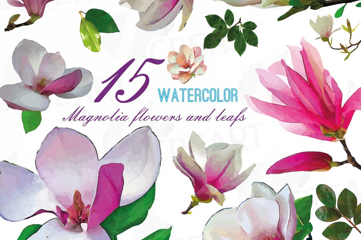 Watercolor Pink Magnolia Flower And Leaf Clip Art Pack Magnolias Clip