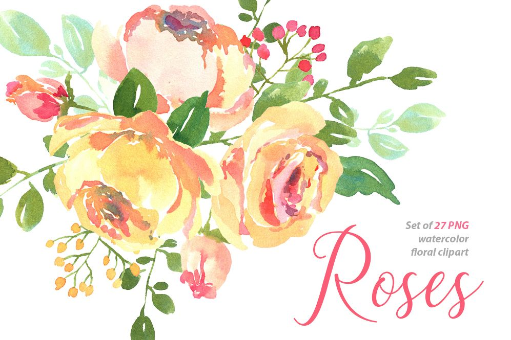 Yellow pink watercolour roses PNG set example image 1