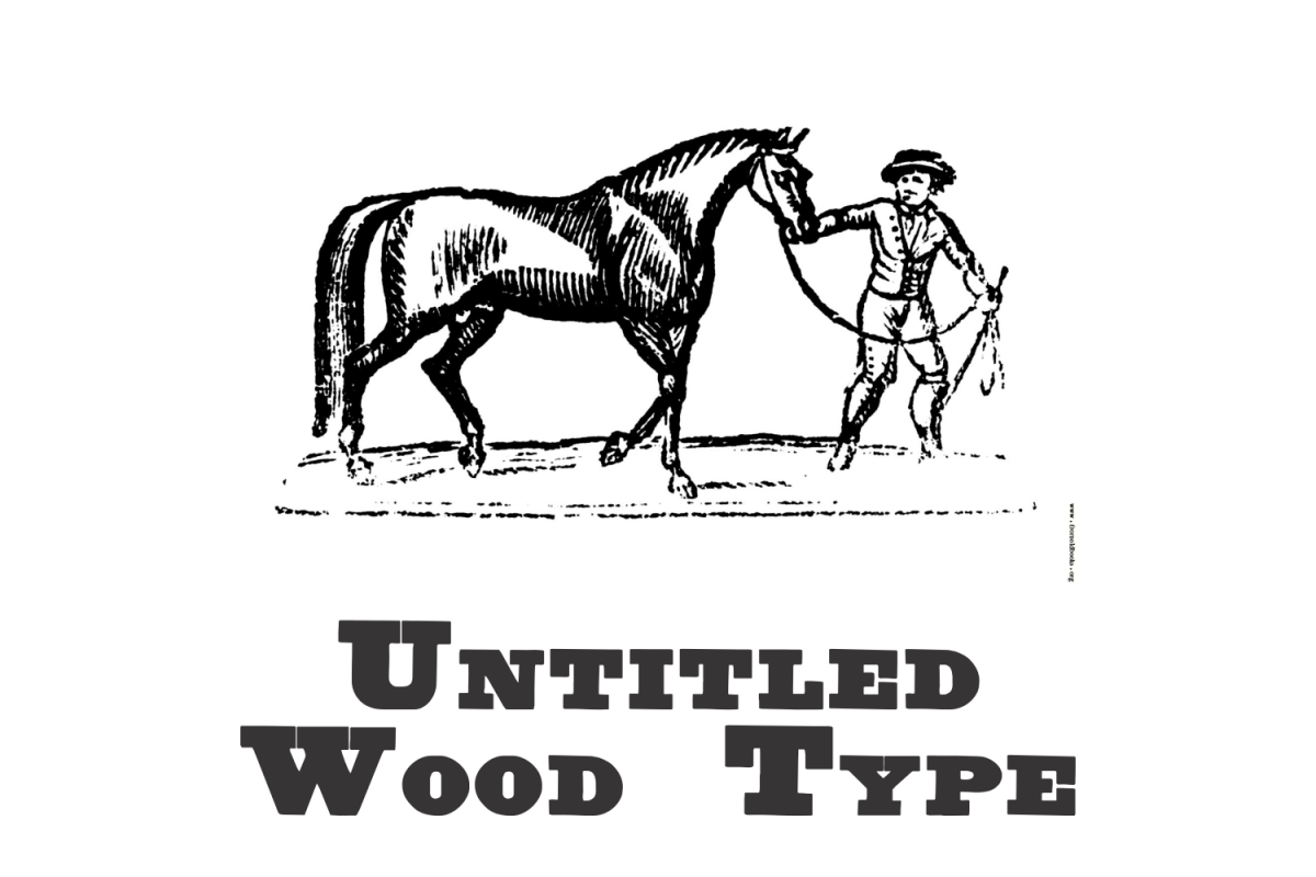 Untitled Wood Type example image 1