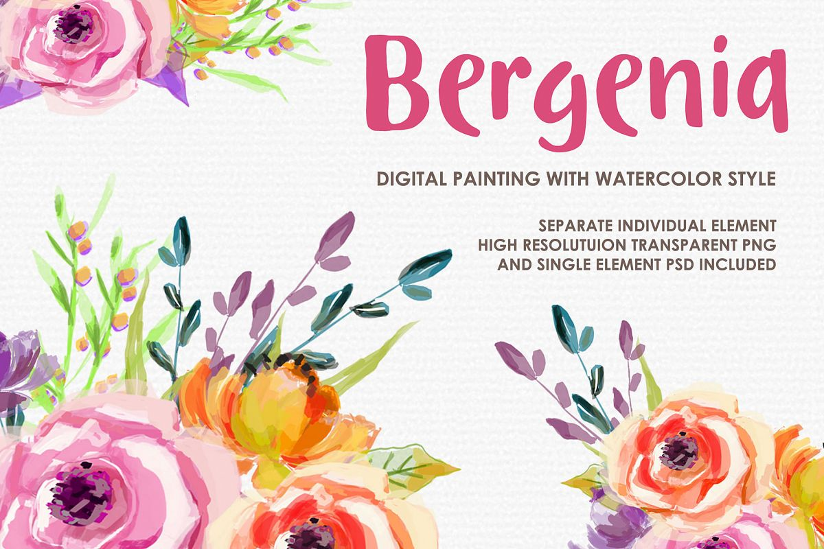 Bergenia - Digital Watercolor Floral Flower Style Clipart example image 1