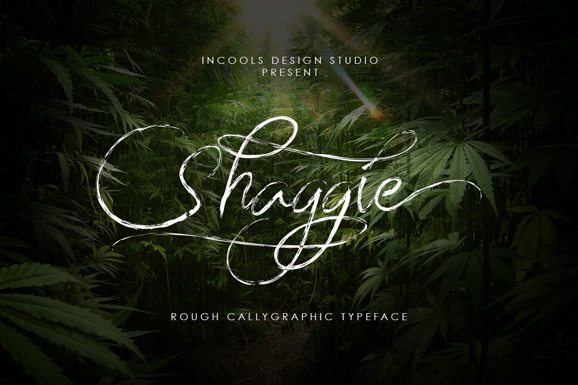 Shaggie example image 1