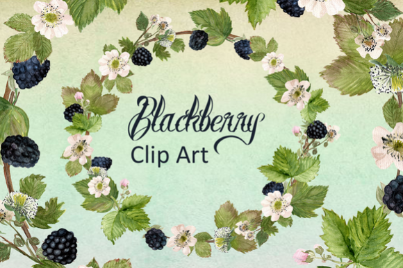 Watercolor Blackberries Clip Art example image 1