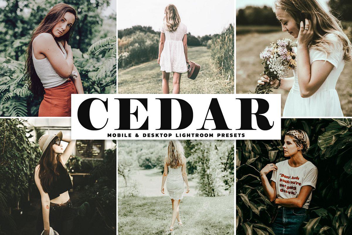 Cedar Mobile & Desktop Lightroom Presets example image 1