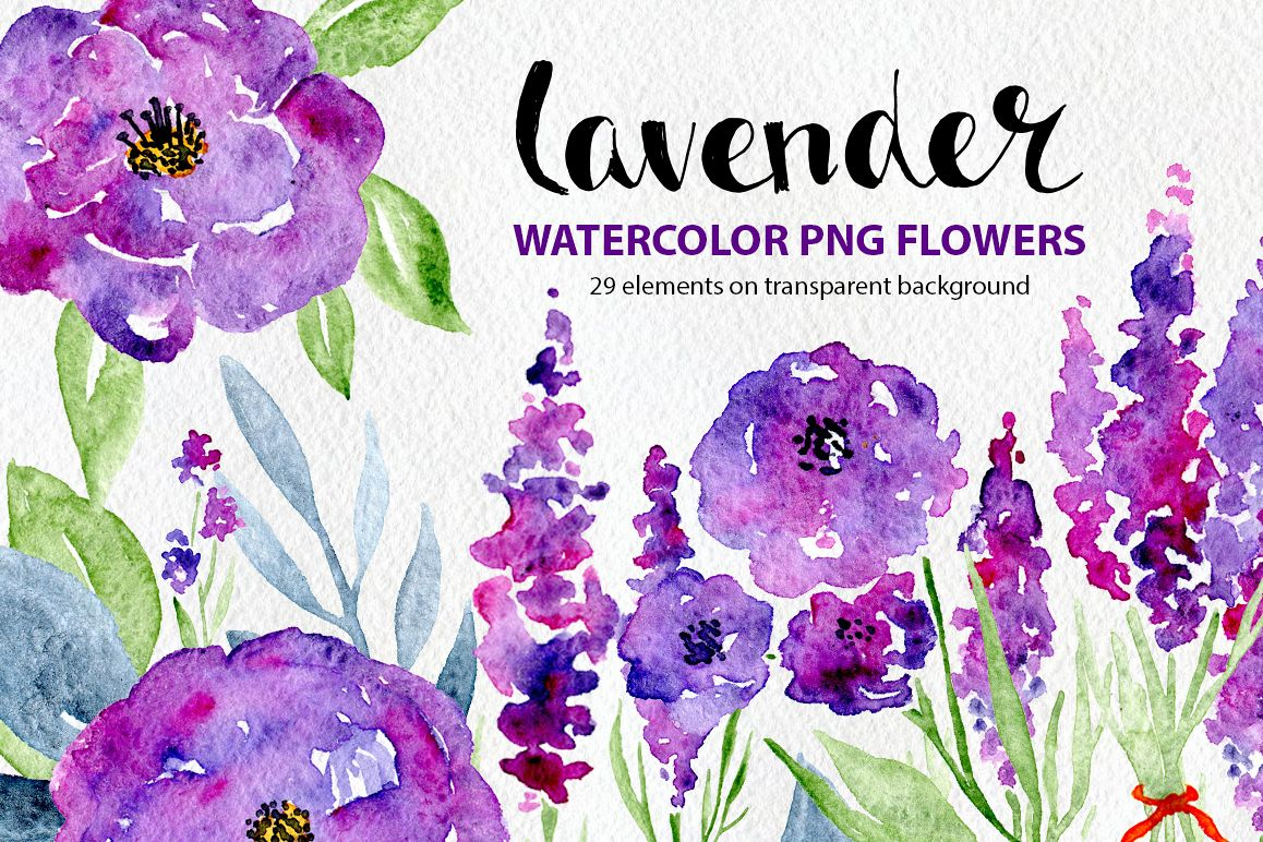 Watercolor violet lilac lavender, roses flowers example image 1