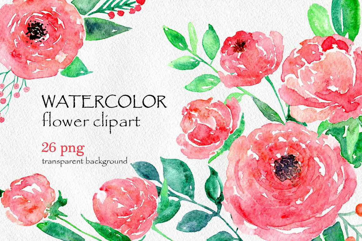 Watercolor flower peony, 26 in set example image 1
