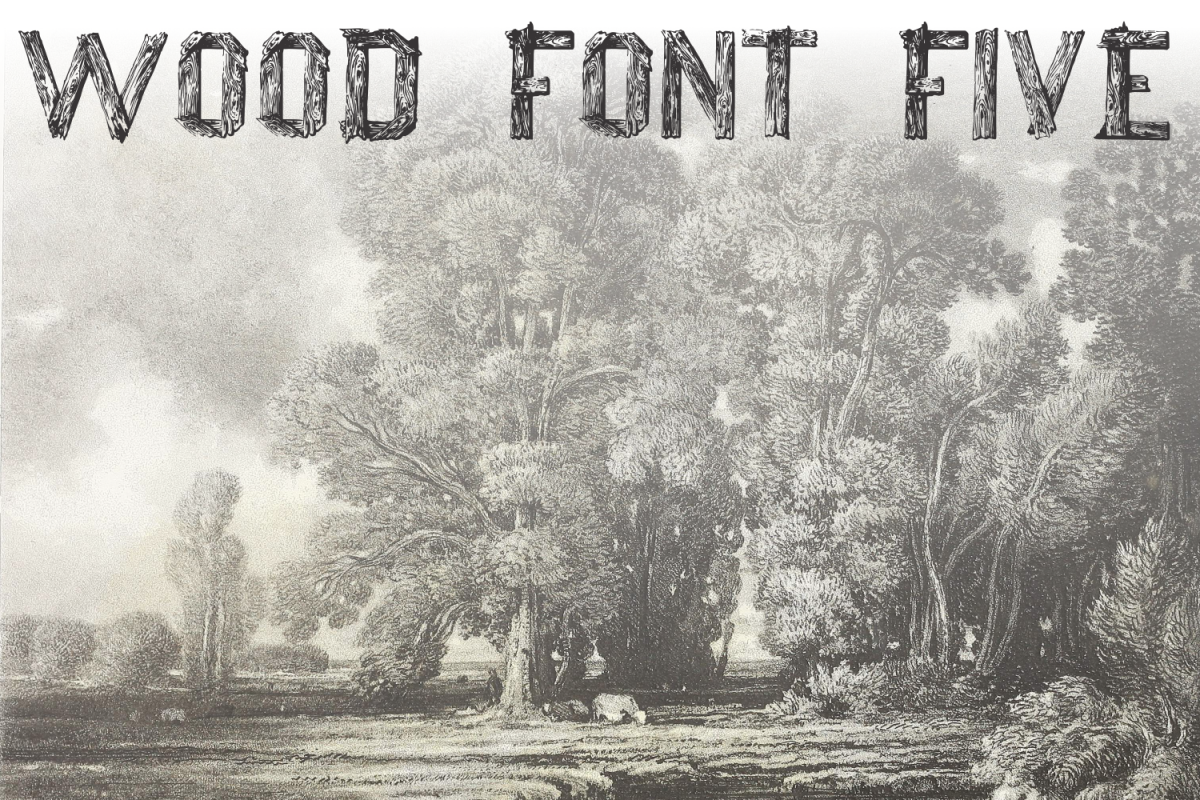 Wood Font Five example image 1