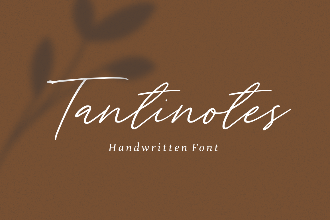 Tantinotes - Handwritten Font example image 1