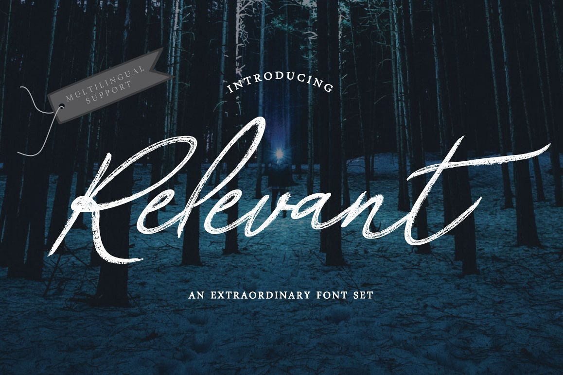 Relevant Brush Typeface example image 1