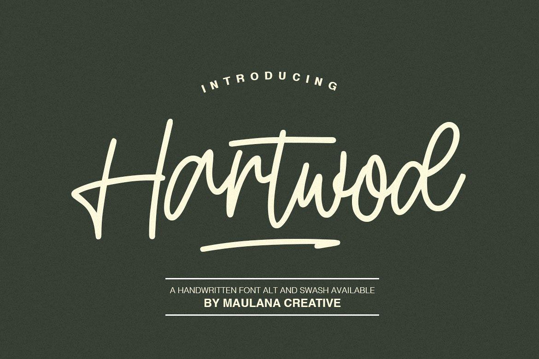 Hartwod Handwritten Font example image 1