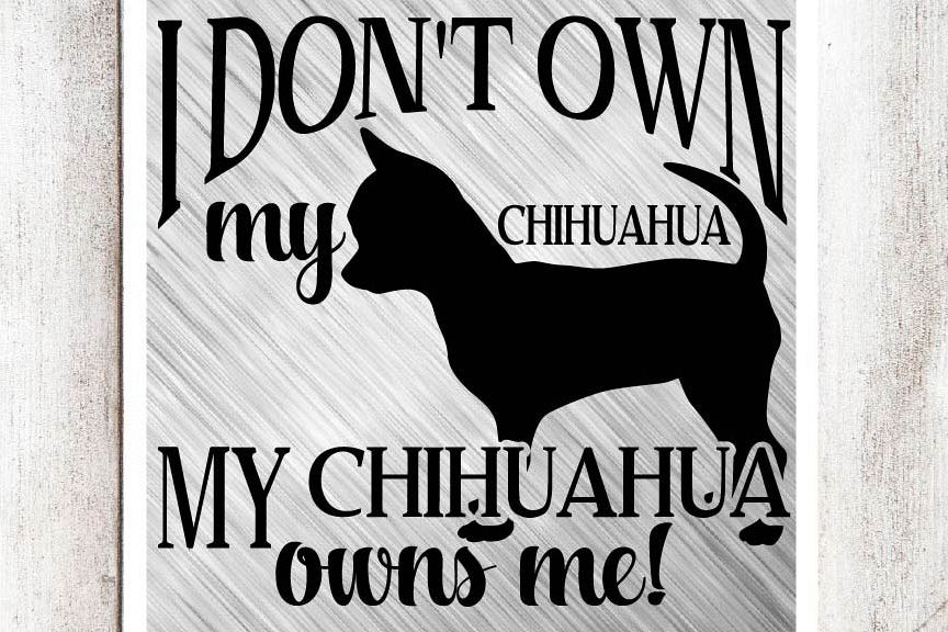 My Chihuahua Owns Me SVG/DXF/EPS File example image 1