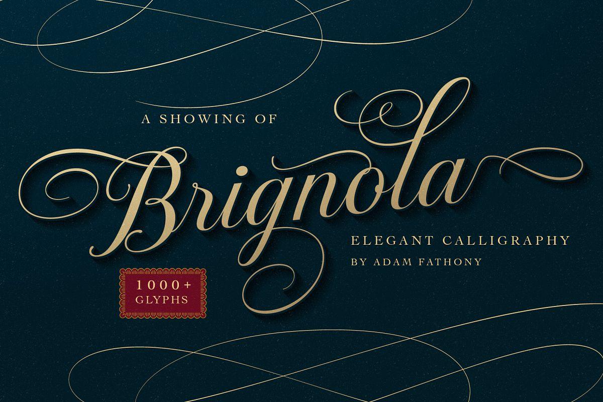 Brignola Elegant Calligraphy example image 1