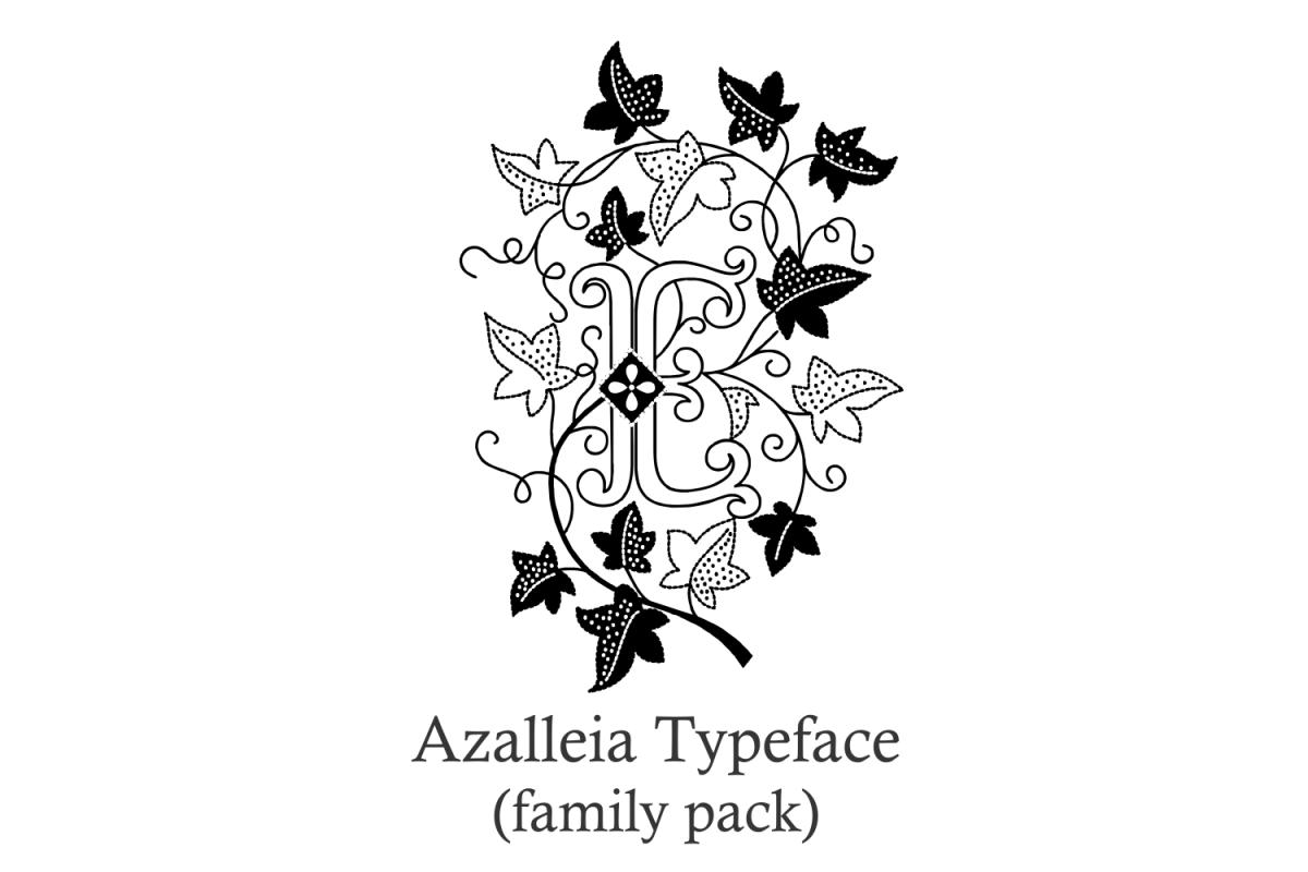 Azalleia Typeface Family Pack example image 1