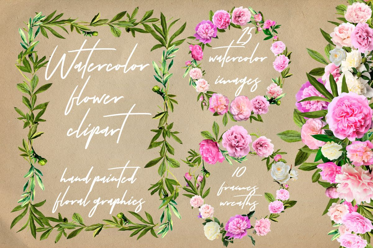Watercolor Peonies Flowers Clip Art example image 1