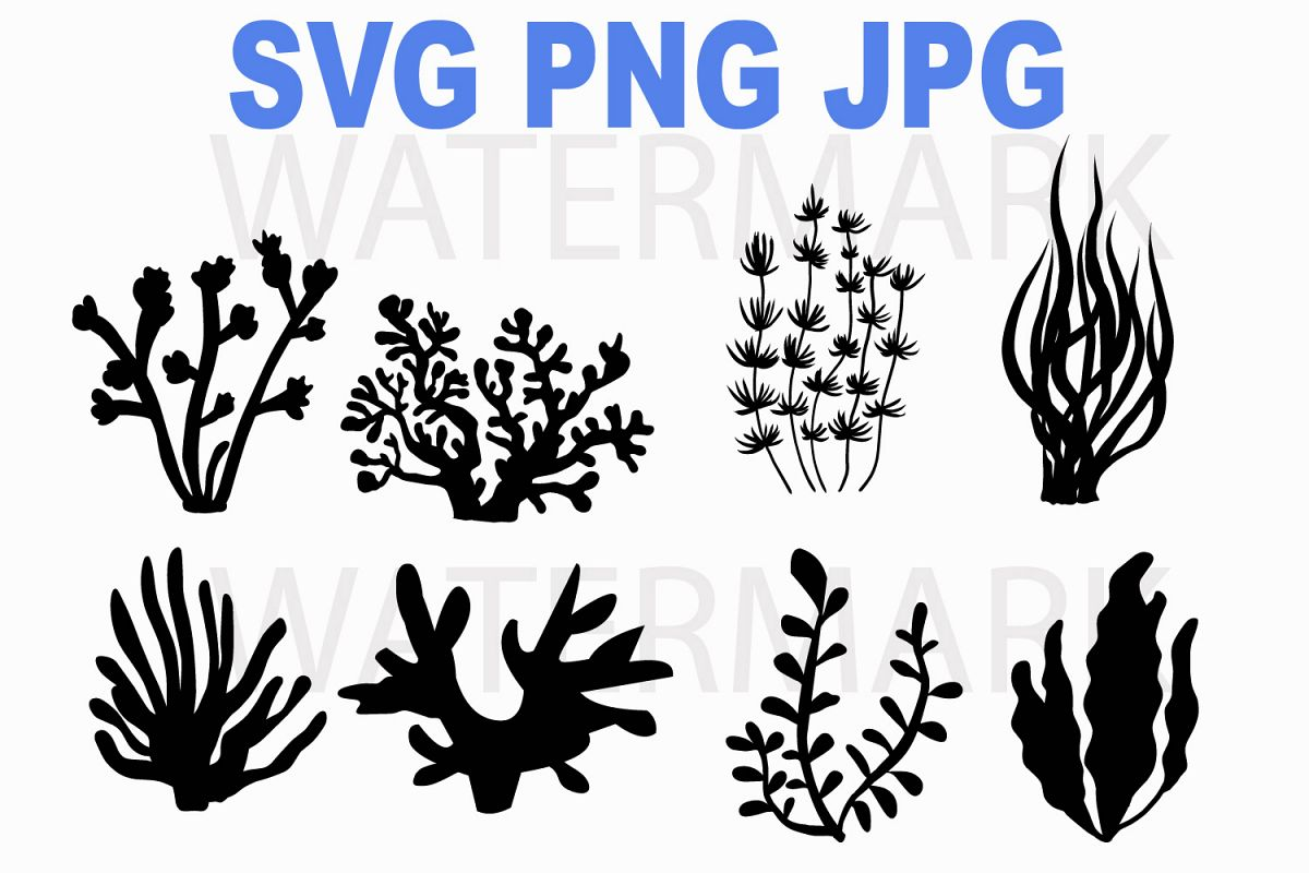 Coral under the sea - SVG PNG JPG