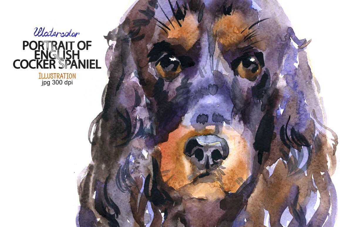 Watercolor English Cocker Spaniel example image 1