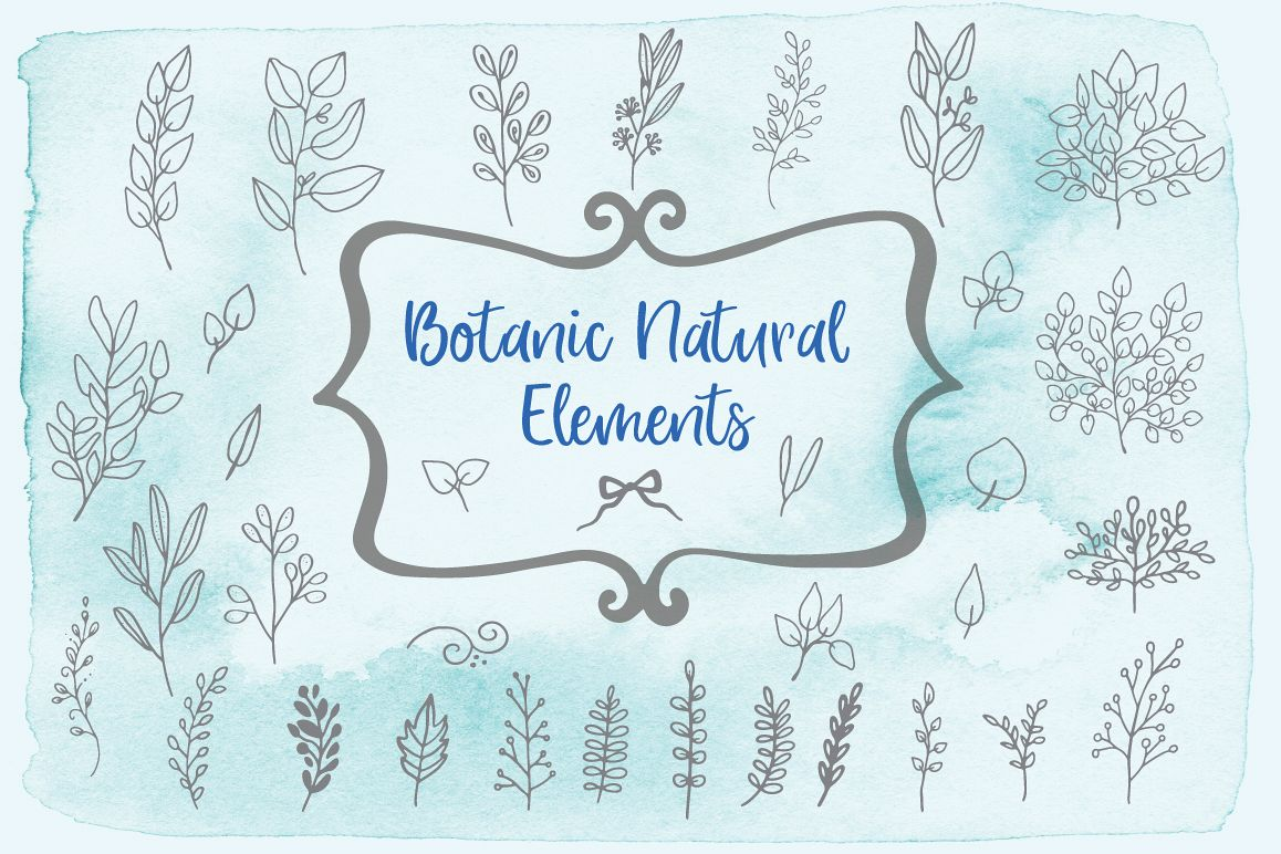 Botanic Natural Elements example image 1