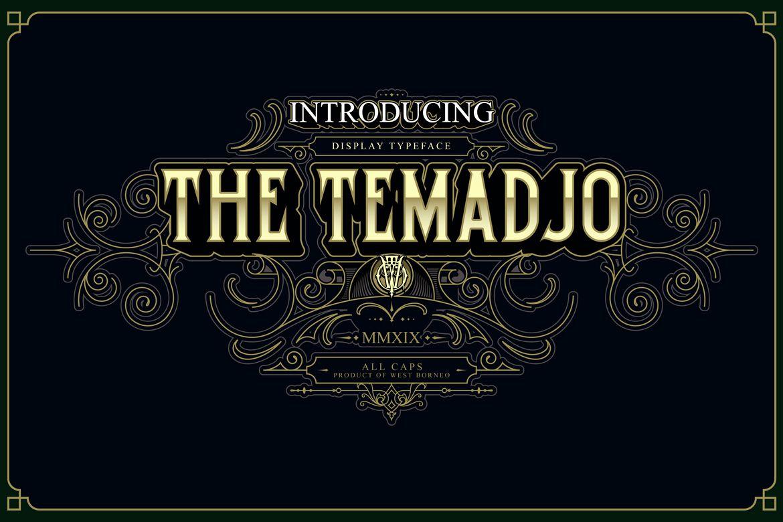 Temadjo example image 1