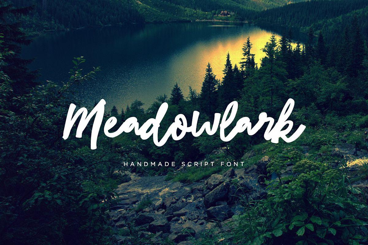 Meadowlark Script Font example image 1