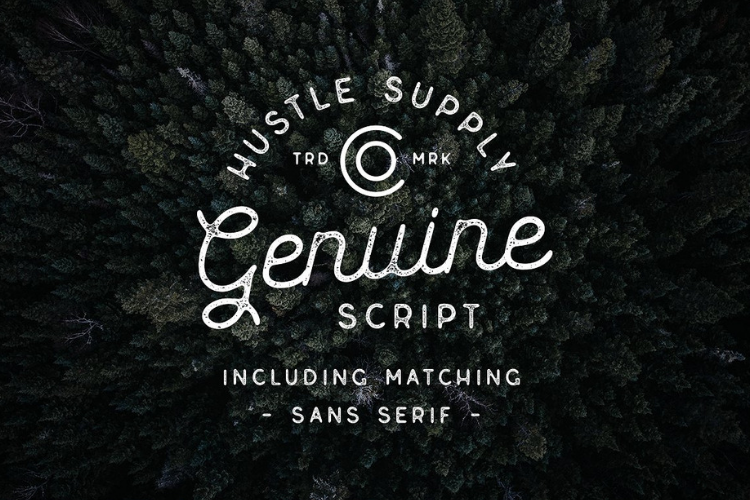 Genuine Script - Textured Type Duo example image 1