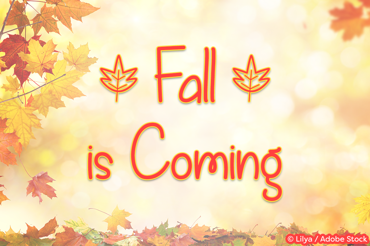 Fall is Coming example image 1