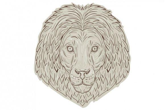Lion Big Cat Head Mane Drawing example image 1