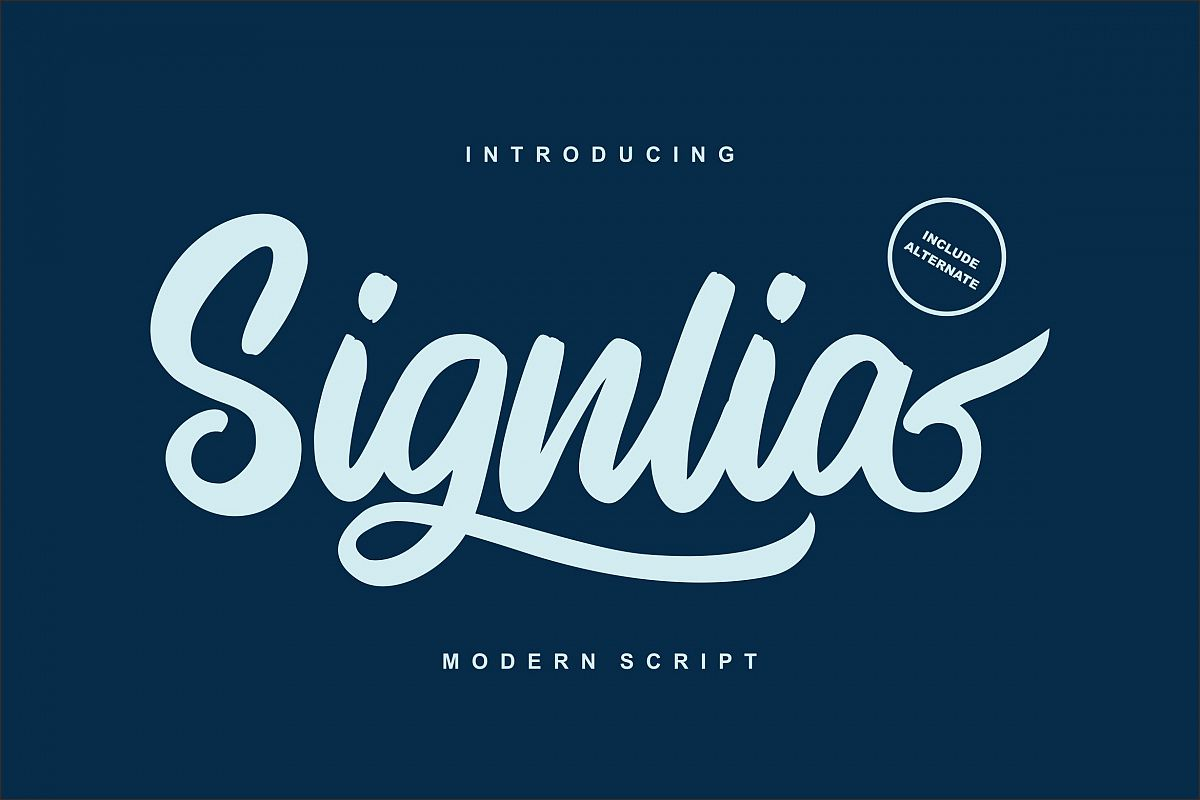 Signlia | Modern Script Font example image 1