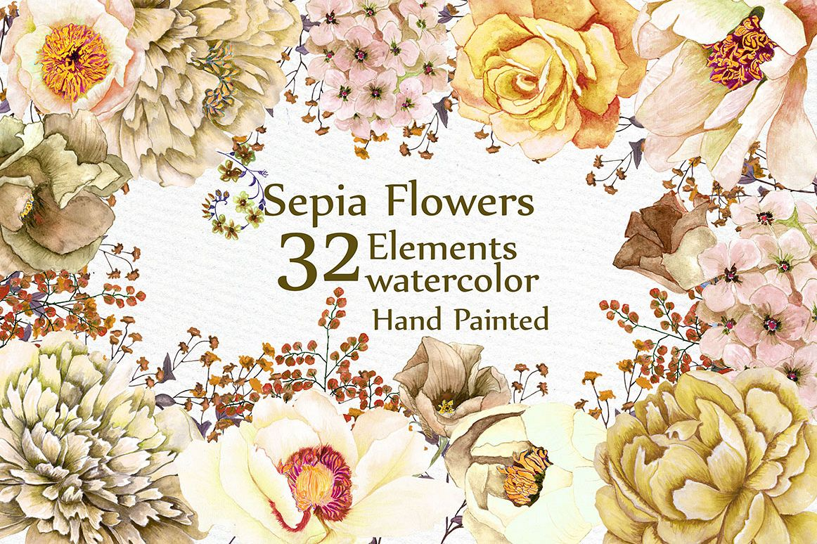 Watercolor Sepia flowers Clipart example image 1