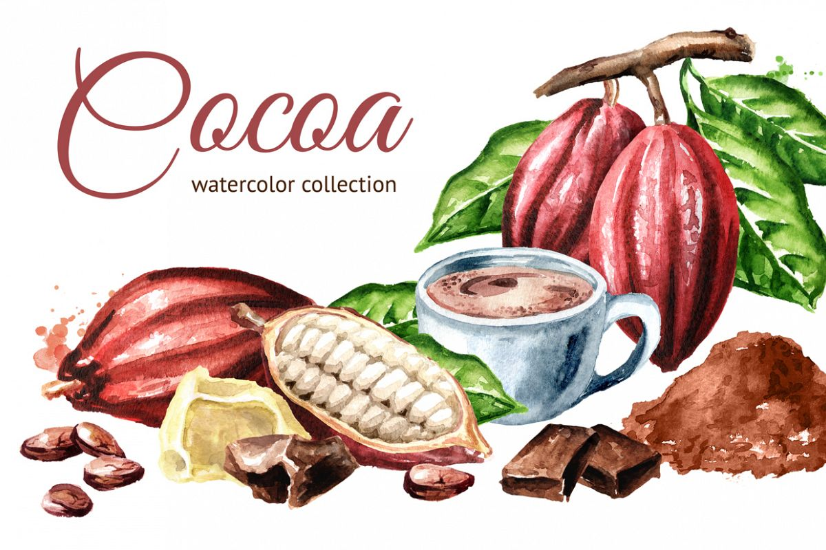 Cocoa. Watercolor collection example image 1