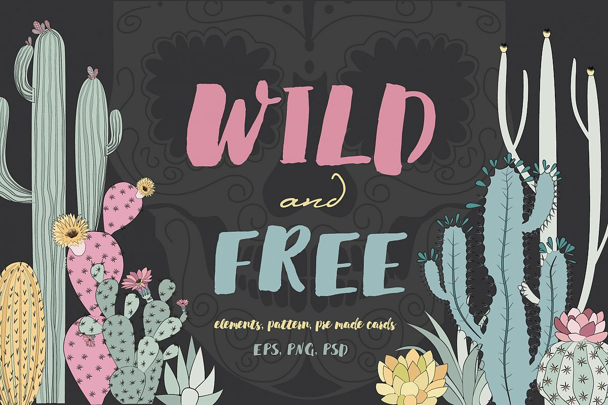 Wild & Free cactus collection example image 1